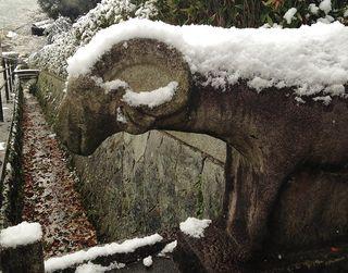 白沙村荘橋本関雪記念館羊1